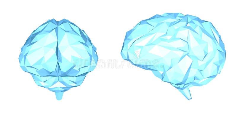 Cerebro poligonal azul ilustración del vector