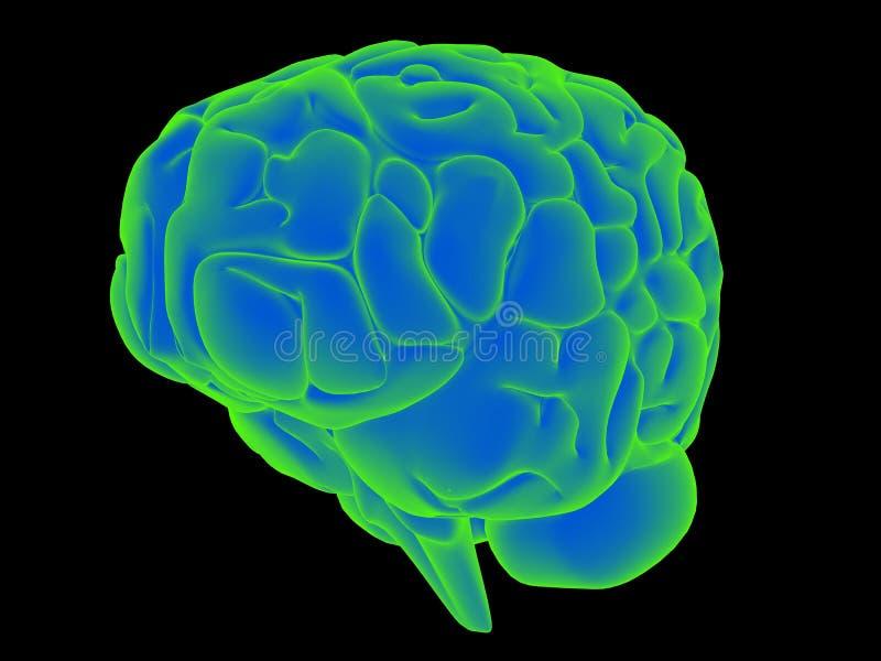 Cerebro que brilla intensamente libre illustration