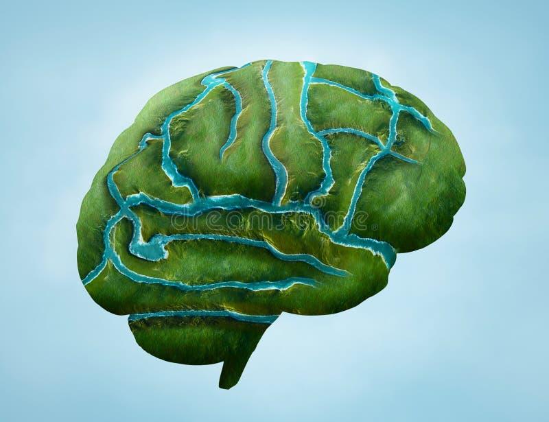 Cerebro verde stock de ilustración