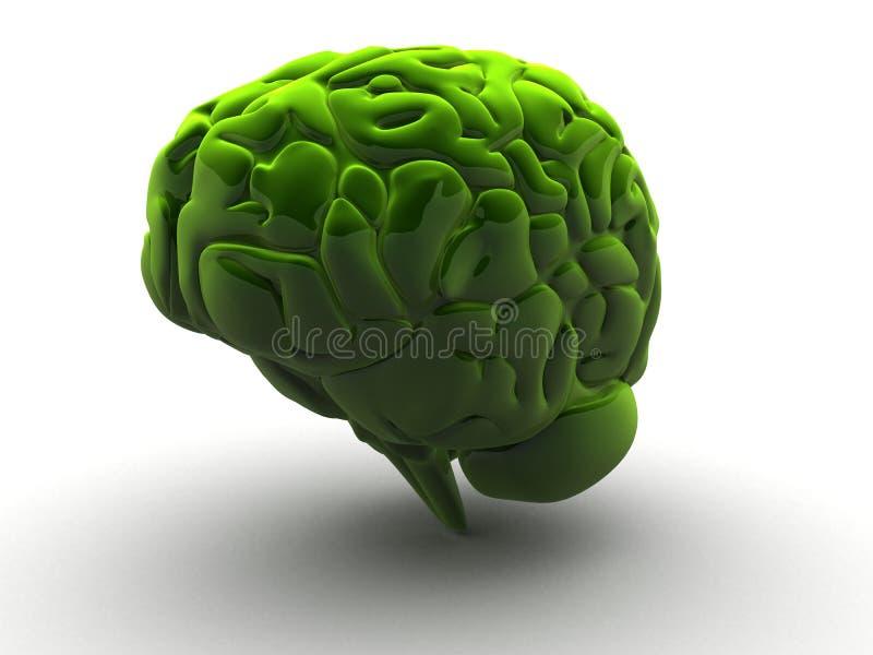 Cerebro verde 3d ilustración del vector