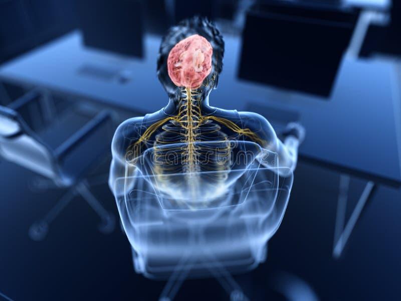 Cerebro y nervios visibles ilustración del vector