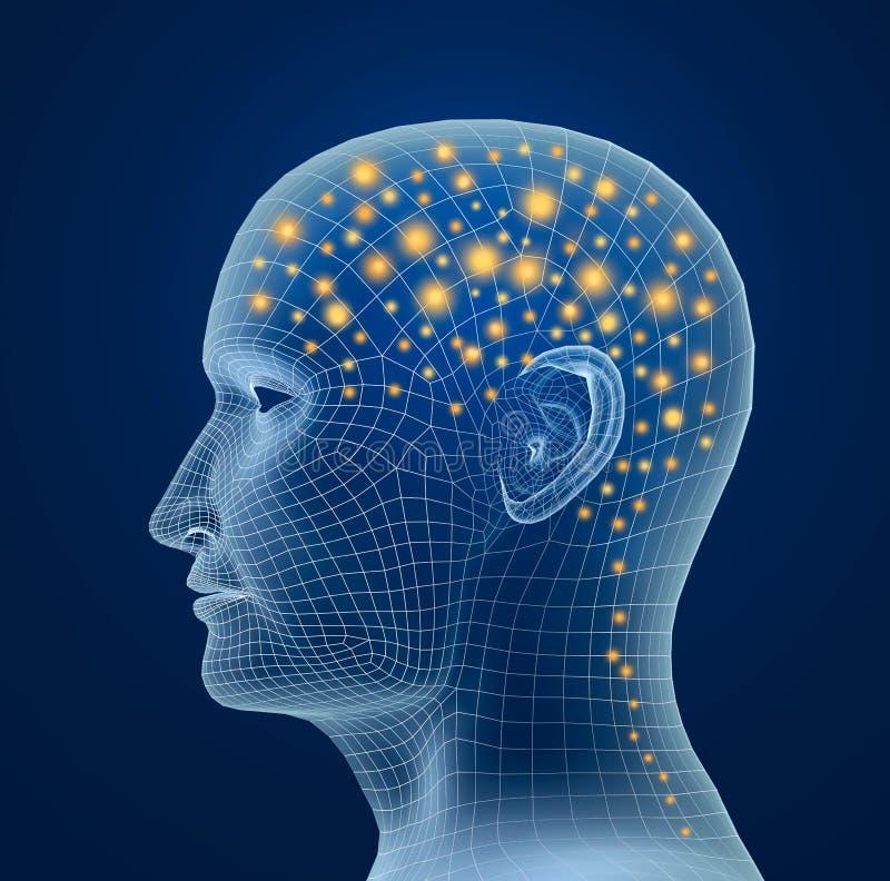 Cerebro, y pulsos Proceso del pensamiento humano ilustración del vector