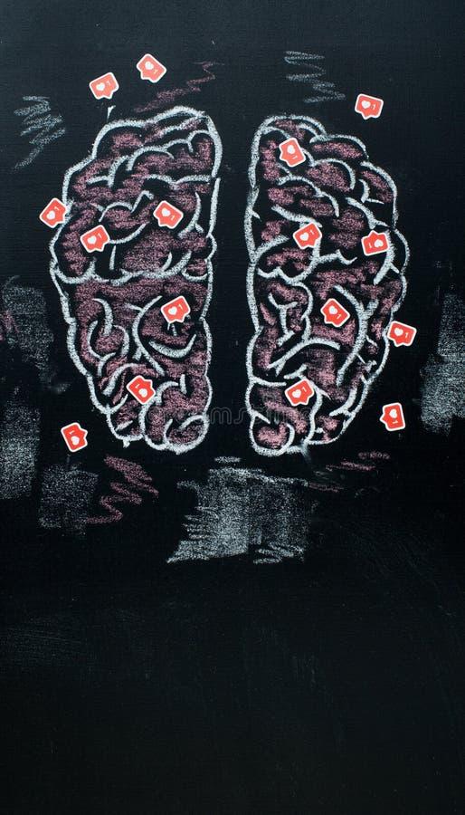 Cerebros humanos llenos de symboles de los gustos en el tablero de tiza negro fotografía de archivo