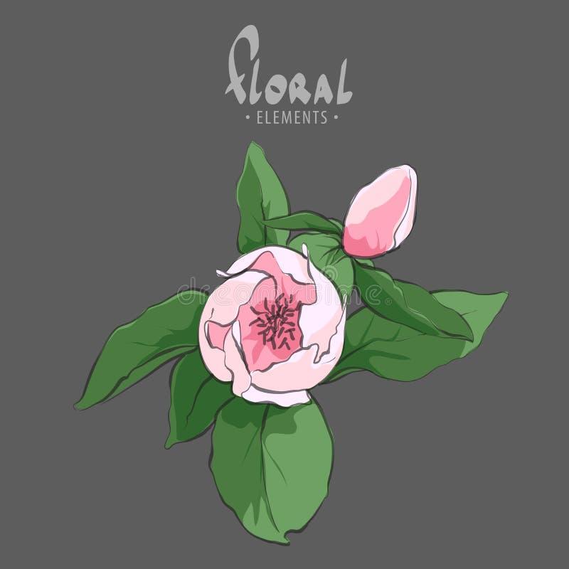Cereja de florescência macia ilustração royalty free