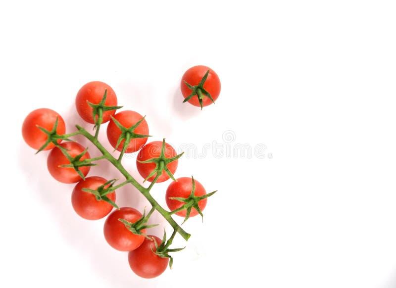 Cereja dos tomates imagens de stock royalty free