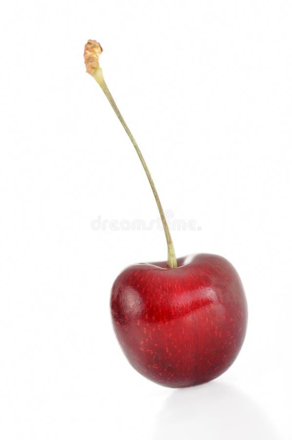 Cereja fruity vermelha fresca imagens de stock royalty free