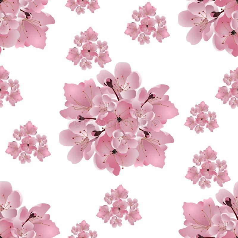Cereja japonesa Grupo de ramalhetes da flor de cerejeira cor-de-rosa No fundo branco seamless Ilustração ilustração do vetor