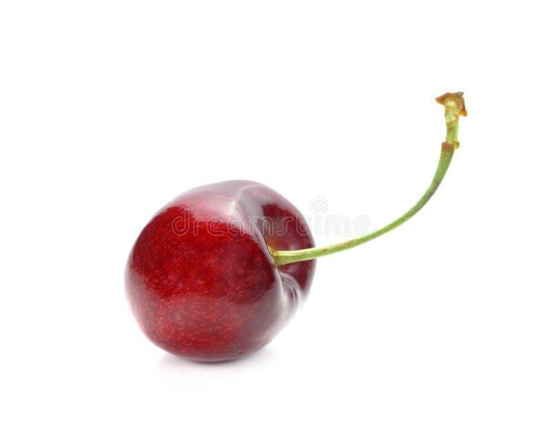 Cereja madura isolada Fruto de baga da xerez isolado no backg branco imagem de stock royalty free