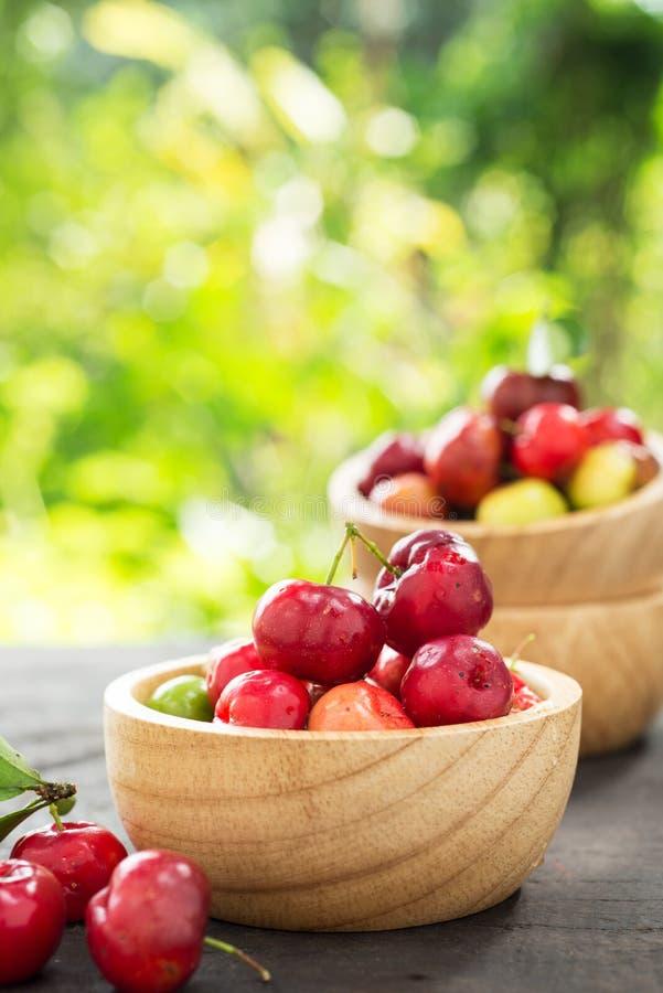 Cereja pequena do fruto brasileiro orgânico do Acerola imagem de stock royalty free
