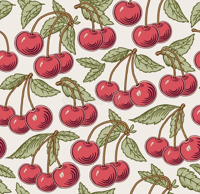 Cereja vermelha, madura, árvore isolada Gravura, desenho freehand flora Ilustração realística do vetor do vintage Fundo sem emend ilustração stock