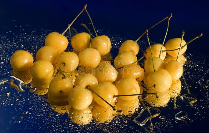 Cerejas amarelas em gotas da água fotos de stock