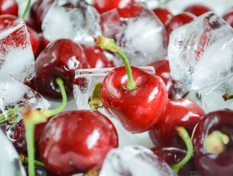 Cerejas frescas com cubos de gelo fotos de stock