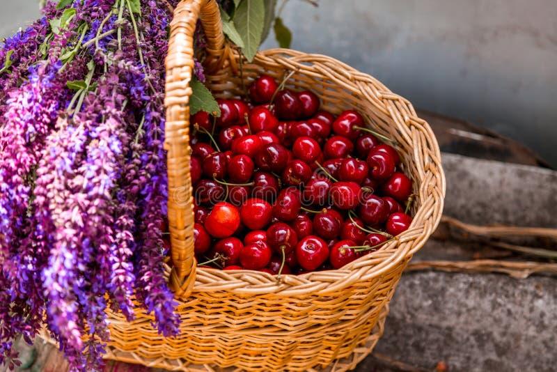 Cerejas frescas em um bascket de madeira ilustração do vetor