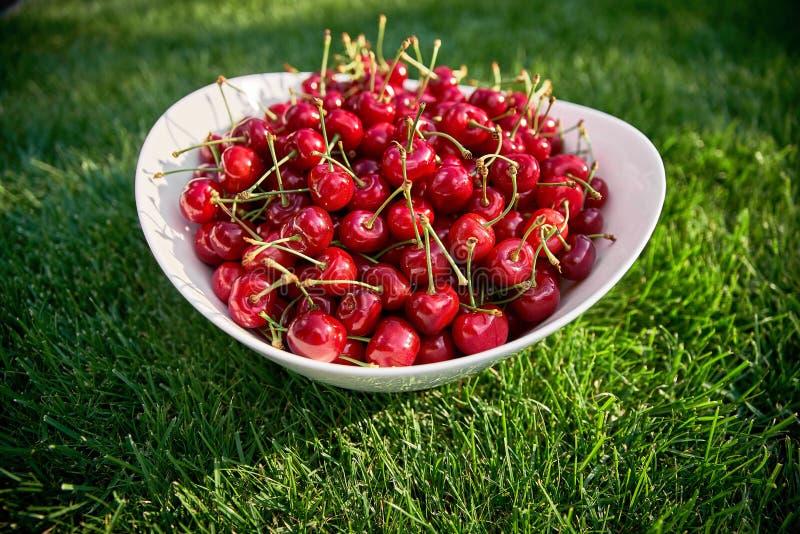 Cerejas maduras vermelhas em uma placa branca na grama verde bagas do verão, vitaminas naturais, alimento saudável foto de stock