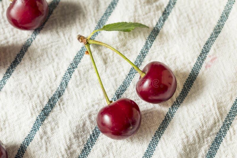 Cerejas orgânicas vermelhas cruas da galdéria foto de stock