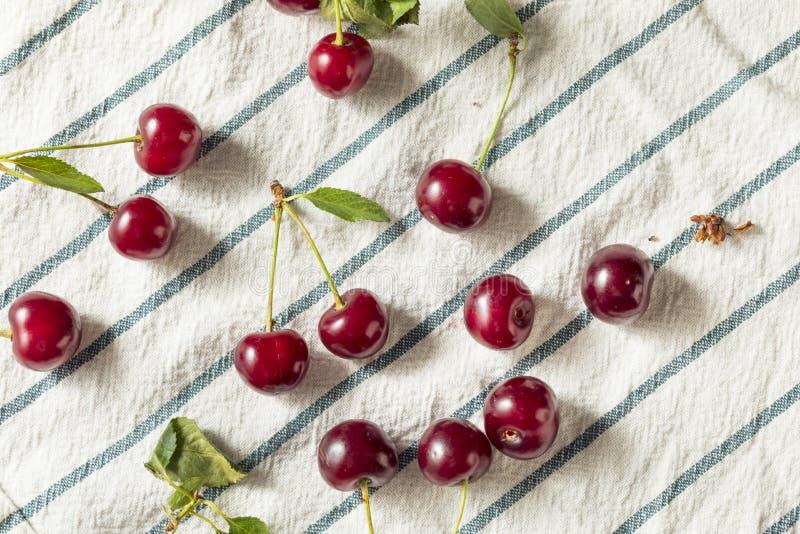 Cerejas orgânicas vermelhas cruas da galdéria fotografia de stock