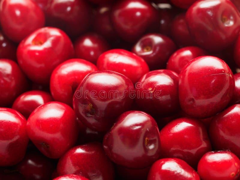 Cerejas vermelhas imagens de stock royalty free