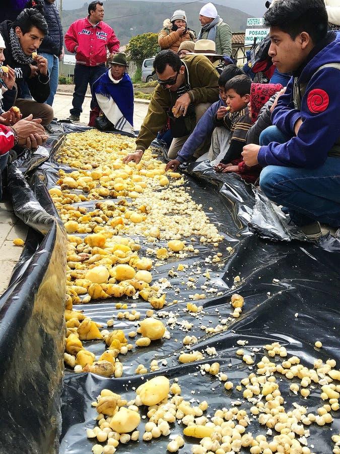 Ceremoni på Inti Raymi Festival på Ingapirca fördärvar, Ecuador royaltyfri foto