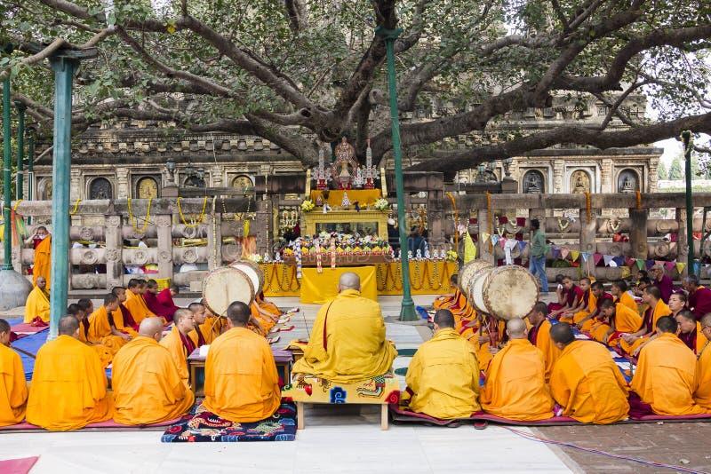 Ceremonia pod bodhi drzewem fotografia stock