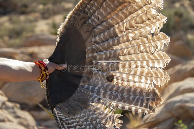 Ceremonial bird feather fan during spiritual ceremony in the desert. royalty free stock image