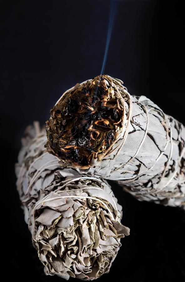 Ceremonial White Sage salvia apiana smoldering fumigation. Dried White Sage Smudge Stick burning dried leaves with light blue smoke isolated on black background royalty free stock images