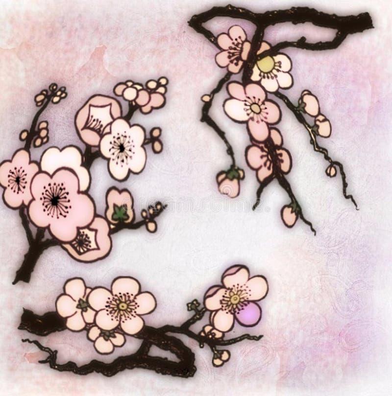 Cereza de los párpados que florece en primavera fotografía de archivo