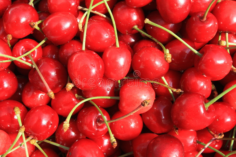 Cereza fresca roja imagen de archivo libre de regalías