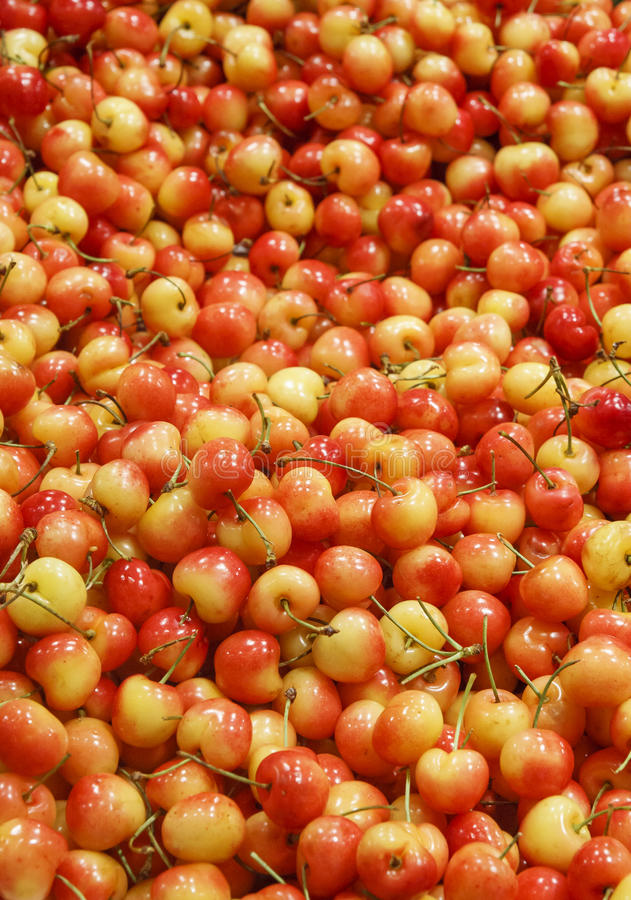 Cerezas de Ranier en una mercado de la fruta imagen de archivo