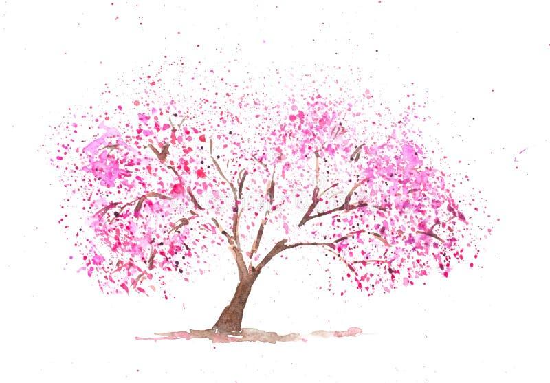 Cerezo rosado libre illustration