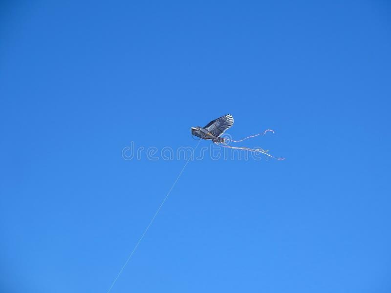 cerf-volant photo libre de droits