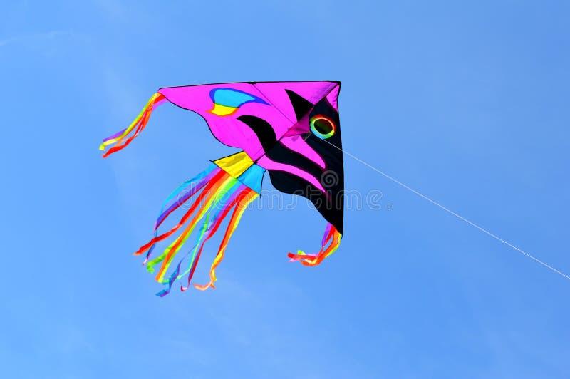 cerf-volant photographie stock libre de droits