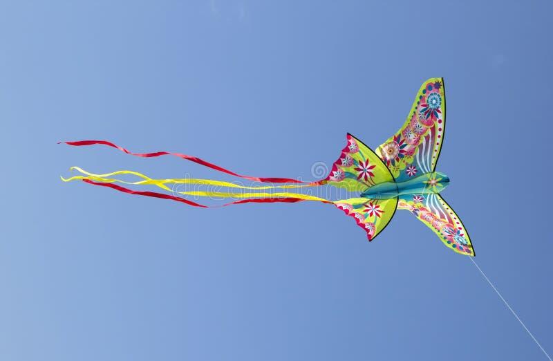 Cerf-volant coloré images libres de droits