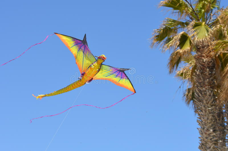 Cerf-volant coloré photos libres de droits