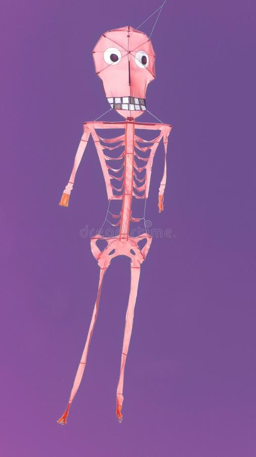 Cerf-volant squelettique de ciel mauve artistique images stock