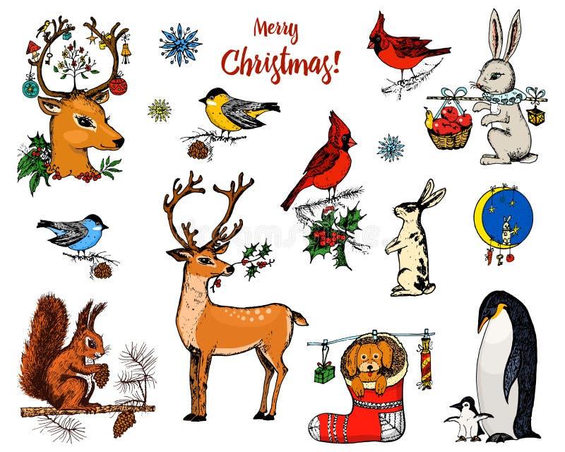 Cerfs communs, écureuil et animaux à cornes de Noël Pingouin de nouvelle année et cardinal ou mésange d'oiseau pendant les vacanc illustration stock