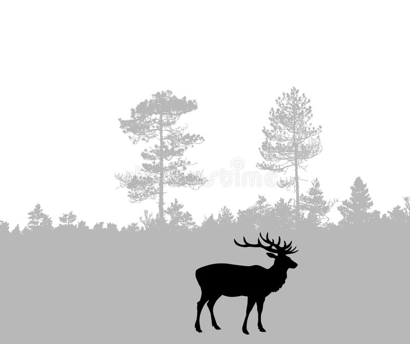 Cerfs communs illustration stock