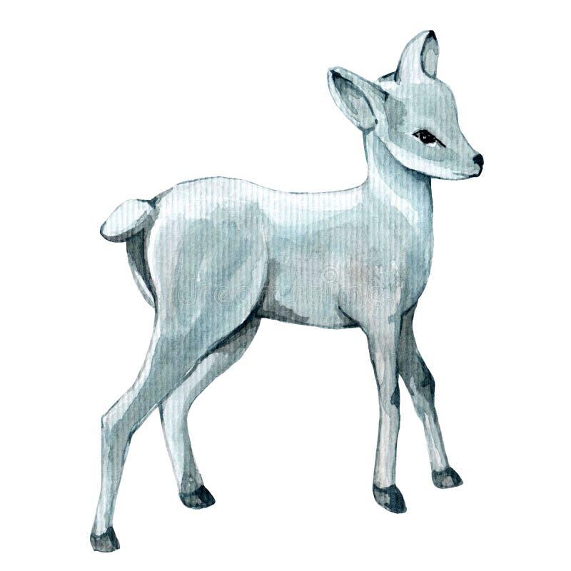 Cerfs communs argentés d'aquarelle illustration stock