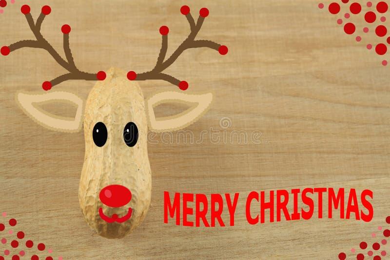 Cerfs communs de Noël avec un nez rouge photos libres de droits
