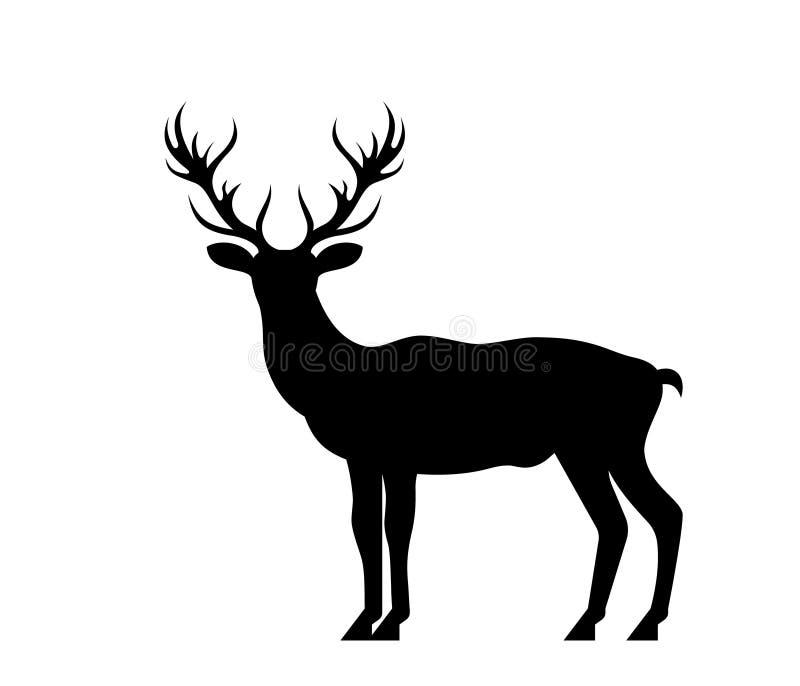 Cerfs communs de silhouette, mâle, renne d'isolement sur le fond blanc illustration stock