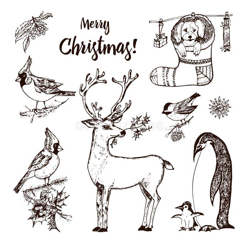 Cerfs communs et animaux à cornes de Noël Pingouin de nouvelle année et cardinal ou mésange d'oiseau pendant les vacances d'hiver illustration stock