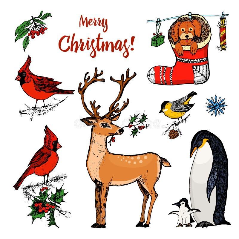 Cerfs communs et animaux à cornes de Noël Pingouin de nouvelle année et cardinal ou mésange d'oiseau pendant les vacances d'hiver illustration libre de droits