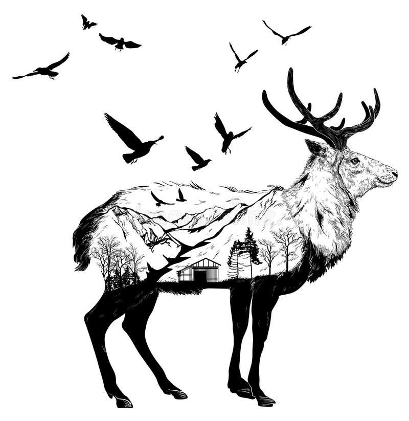 Cerfs communs tirés par la main, concept de faune illustration stock