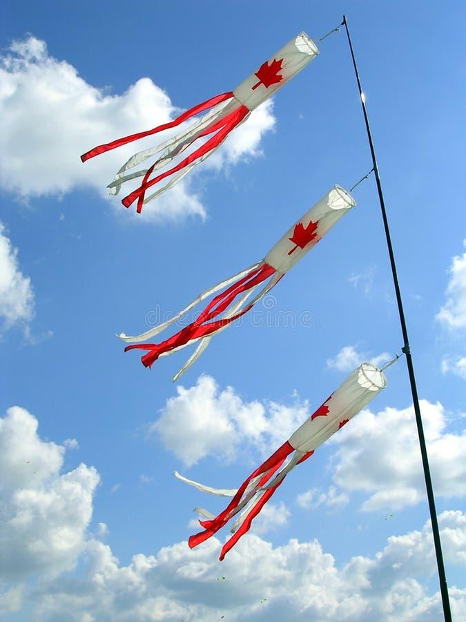 Cerfs-volants avec la configuration canadienne d'indicateur photos stock