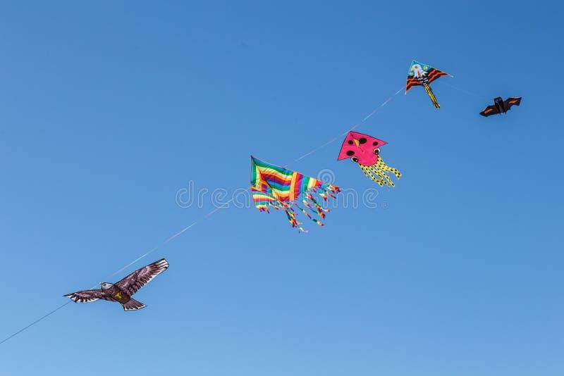 Cerfs-volants colorés flottant dans un ciel photographie stock libre de droits