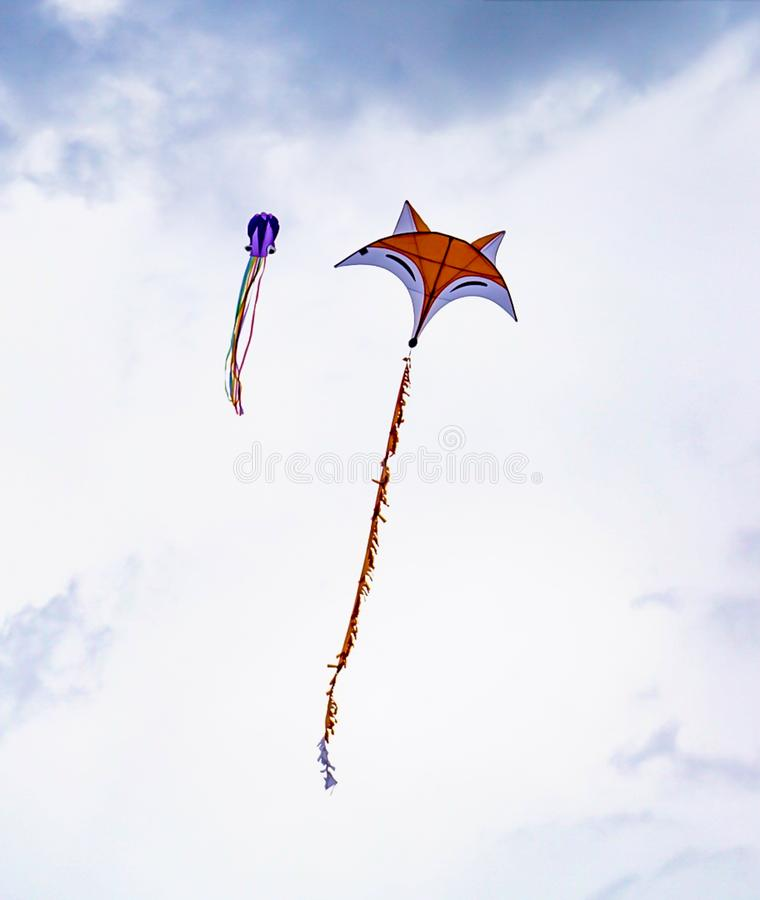 Cerfs-volants de Fox et de calmar volant dans le ciel image libre de droits