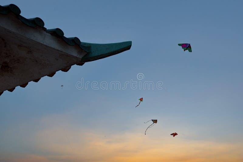 Cerfs-volants volant dans le ciel de coucher du soleil photo libre de droits