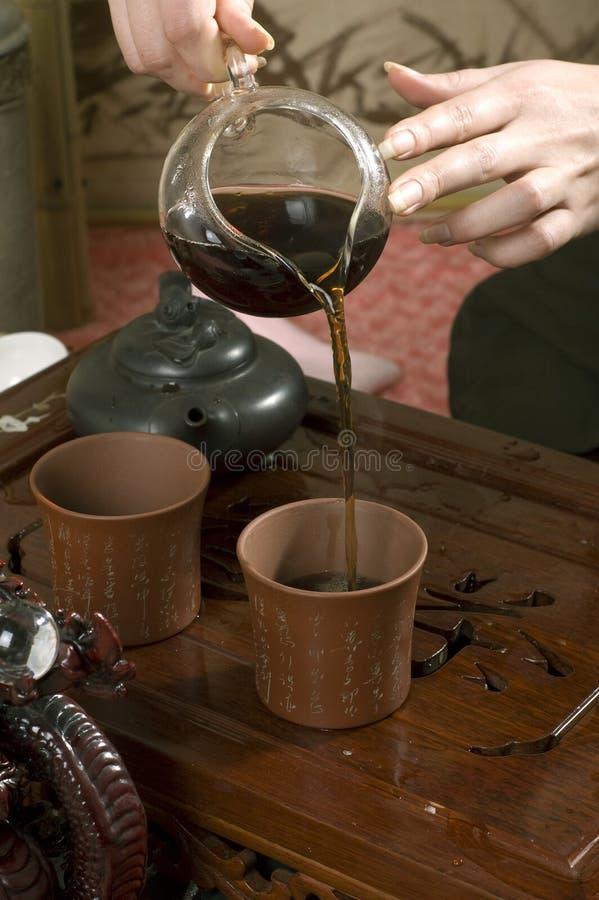 Cerimónia de chá de Gongfu imagem de stock royalty free