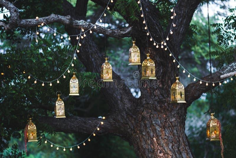 Cerimônia de casamento da noite com as lâmpadas do vintage na árvore fotografia de stock