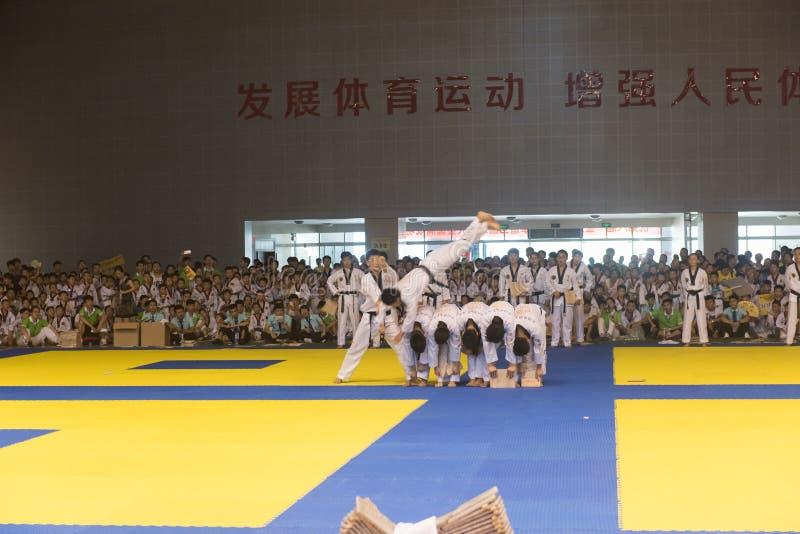 Cerimônia da Desempenho-abertura--A competição amigável de Taekwondo do oitavo copo de GoldenTeam fotografia de stock royalty free