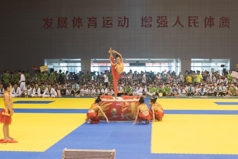 Cerimônia da Desempenho-abertura--A competição amigável de Taekwondo do oitavo copo de GoldenTeam foto de stock royalty free